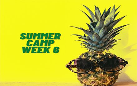6006 - Summer Day Camp